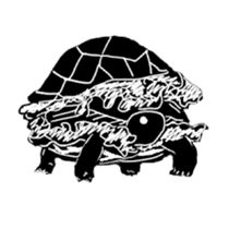 Tortoise life sticker #360077