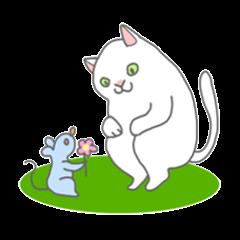Cat-like