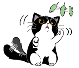 Panda-cat Mink(English version) sticker #360421