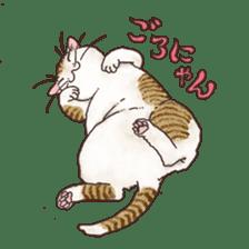 Tabby CATS sticker #364466