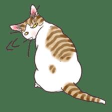 Tabby CATS sticker #364467