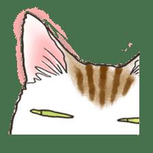 Tabby CATS sticker #364470