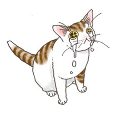 Tabby CATS sticker #364477