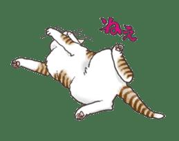 Tabby CATS sticker #364484