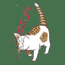 Tabby CATS sticker #364496