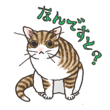 Tabby CATS sticker #364498