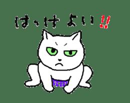 Although it is a cat sticker #365226