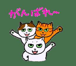 Although it is a cat sticker #365254