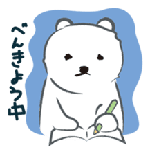 Cute White bear sticker #376677