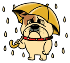 Mr.Bulldog sticker #380986