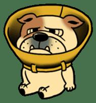 Mr.Bulldog sticker #380996