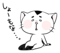 Cat in Osaka sticker #383401