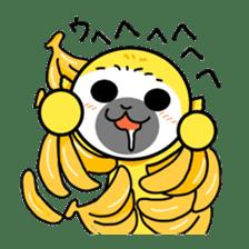 banana daisuki risuzaru kun sticker #387100