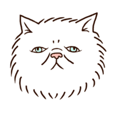 Grumpy cat sticker #391905