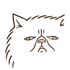 Grumpy cat sticker #391910