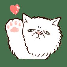 Grumpy cat sticker #391912
