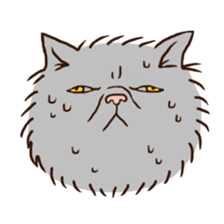 Grumpy cat sticker #391916