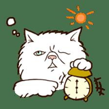 Grumpy cat sticker #391917