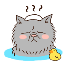 Grumpy cat sticker #391923