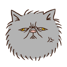 Grumpy cat sticker #391928