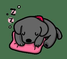 Black Labrador retriever Max sticker #392806