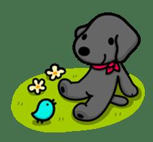 Black Labrador retriever Max sticker #392815