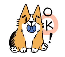 3 Corgi sticker #396425