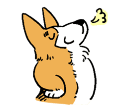 3 Corgi sticker #396436