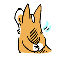 3 Corgi sticker #396438