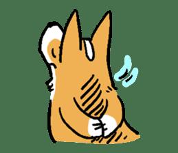 3 Corgi sticker #396438