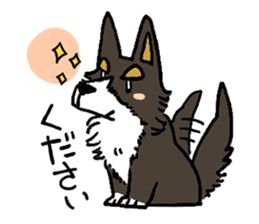 3 Corgi sticker #396439