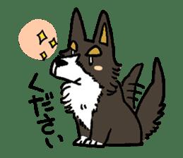 3 Corgi sticker #396439