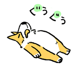 3 Corgi sticker #396455