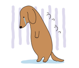 All Dachshund ! sticker #397132