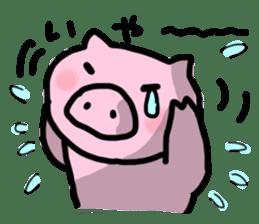 the pig which diets sticker #398954