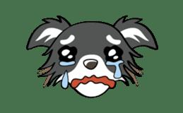 Long coat Chihuahua sticker #421639