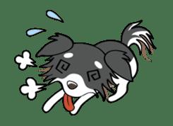 Long coat Chihuahua sticker #421644