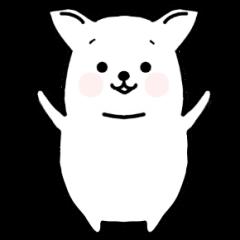 Chihuahuan the cute dog