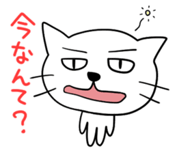 Reactions of a funny cat sticker #427410