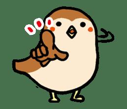 Cute sparrow, Chunta sticker #429409
