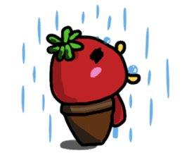 life of tomatoes sticker #434307