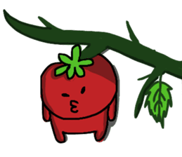 life of tomatoes sticker #434313