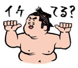 Sumo Wrestlers sticker #436606