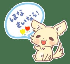 I am a Chihuahua sticker #441768