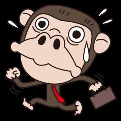 Mr.Chimpanzee