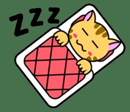 Kitten Nyanta sticker #446815