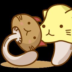 Mushroom-cat