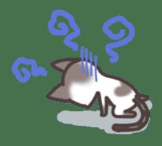 pretty cat sticker #447438
