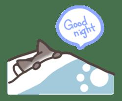 pretty cat sticker #447447
