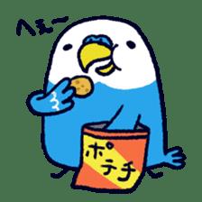 Parakeet INCOCO sticker #448729